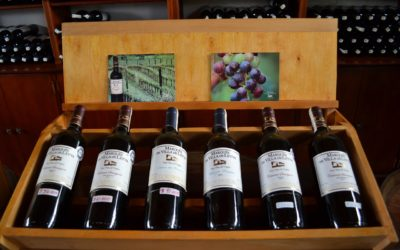 Wine Collection Ideas That You Can Share With Friends