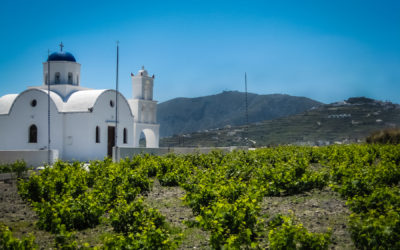 The Island of Santorini: A Unique Wine Region